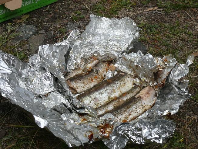 Ugunskurā folijā cepti omuļi – zivis, kuras iesaka nogaršot katram, kurš apmeklē Baikālu