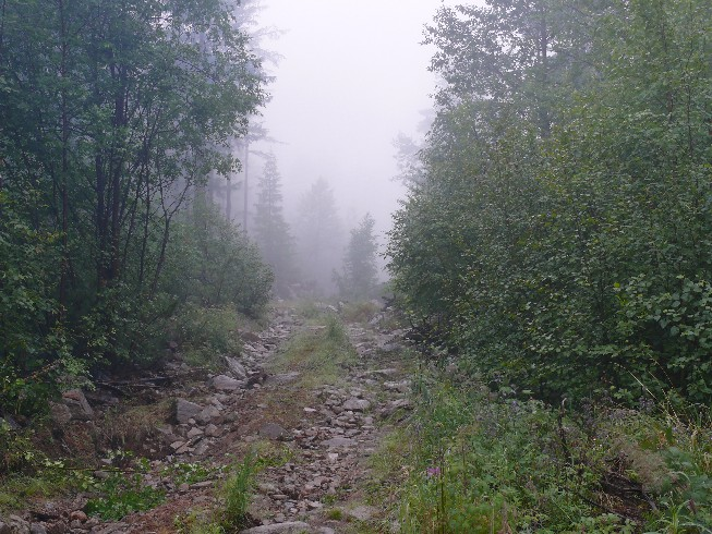 Viens no vislabākajiem ceļa posmiem blakus upei